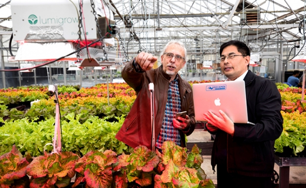 Interdisciplinary Seed Grants bring researchers together